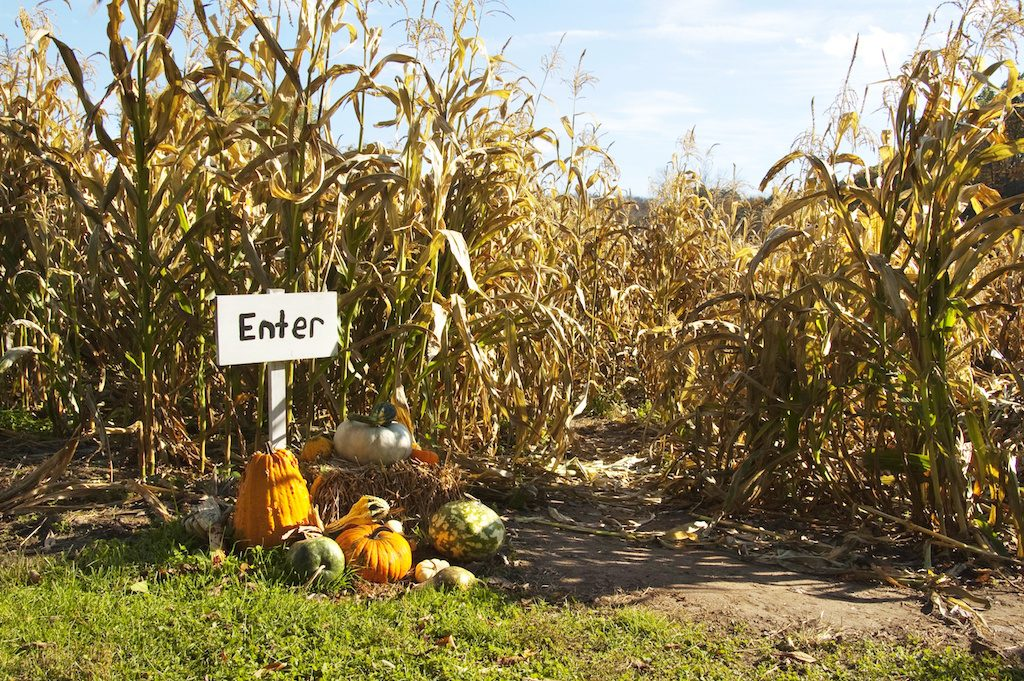 Family fun for Fall - pumpkin patches near new metro Atlanta homes for sale