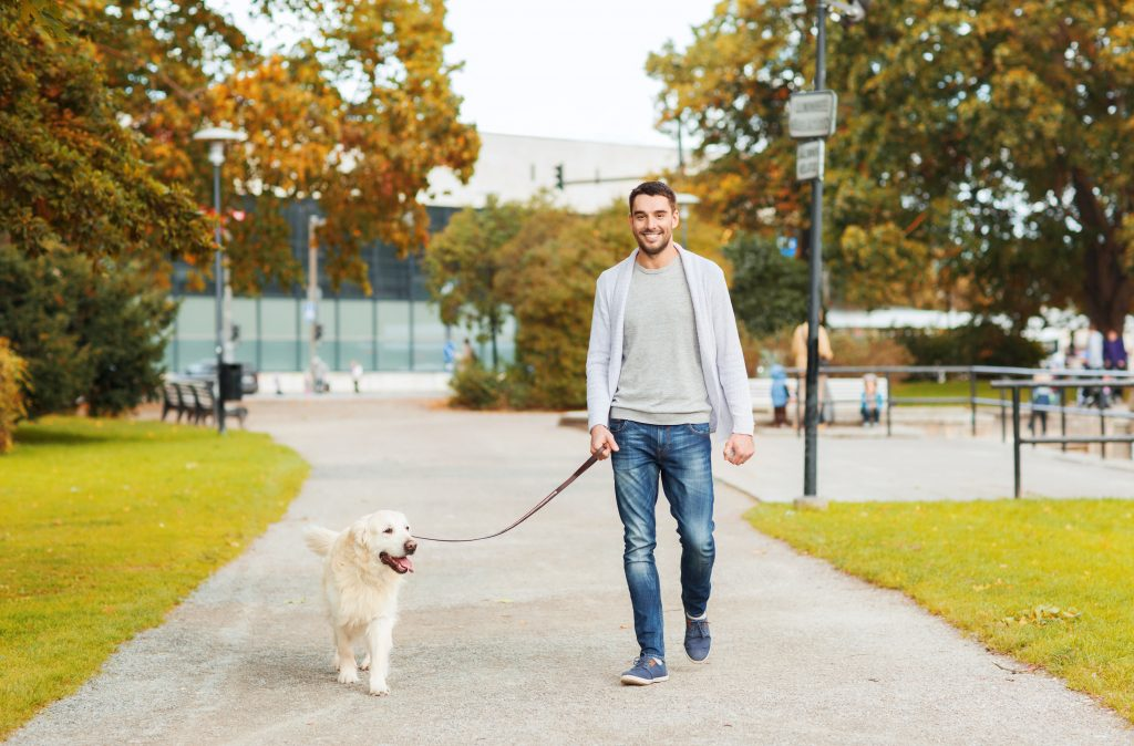walk your dog at swift cantrell park