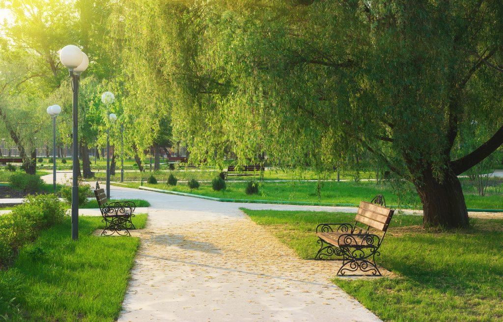 a park, such as those in covington Igor Goncharenko (c) 123rf