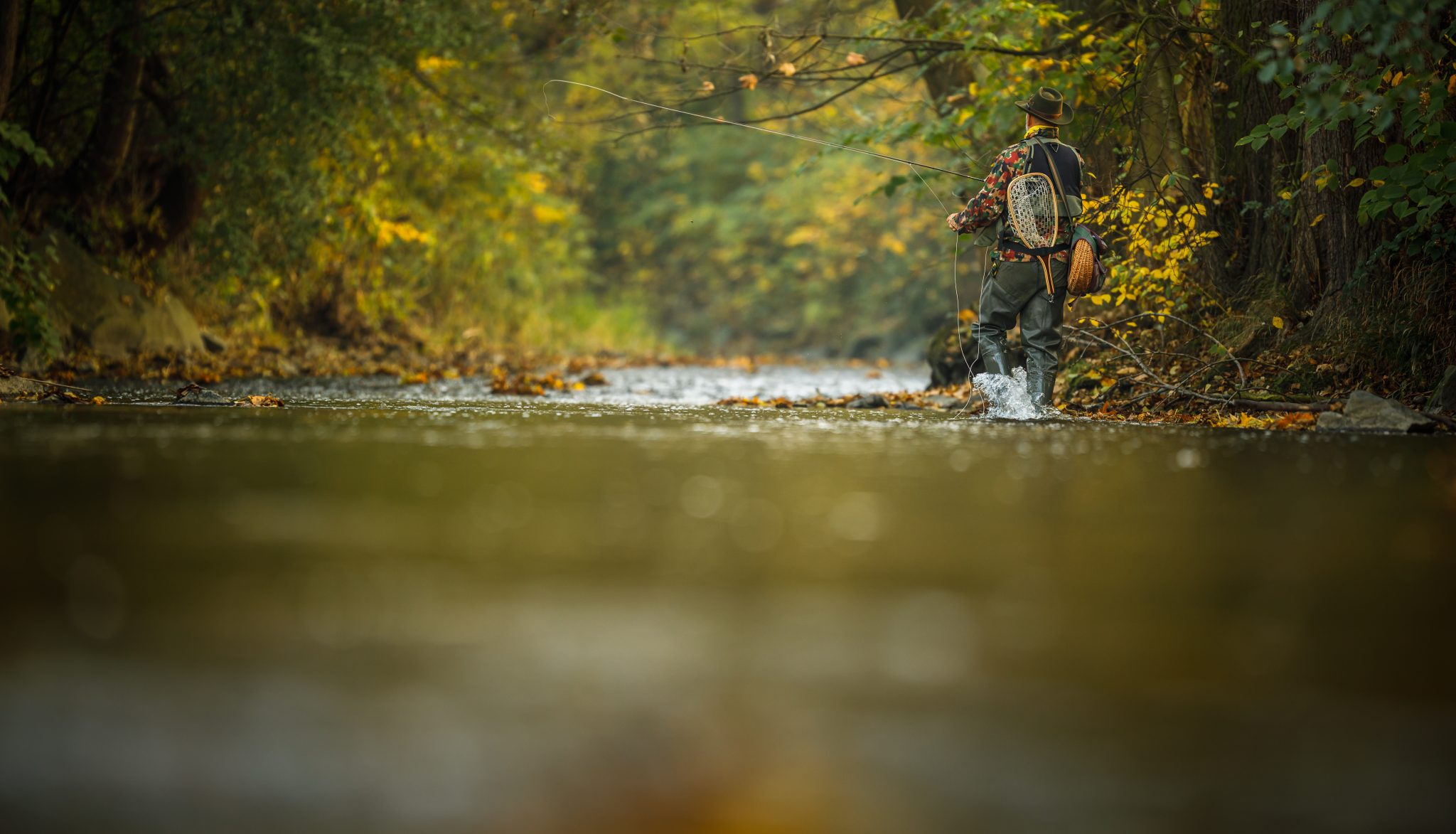fly fishing in the outdoors lightpoet (c) 123rf