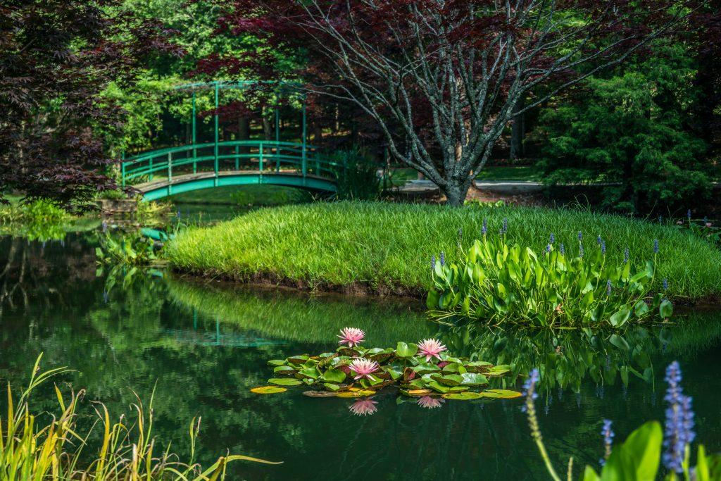 gibbs gardens, a gorgeous outdoor garden in ball ground ga Sandra Burm  (c) 123rf