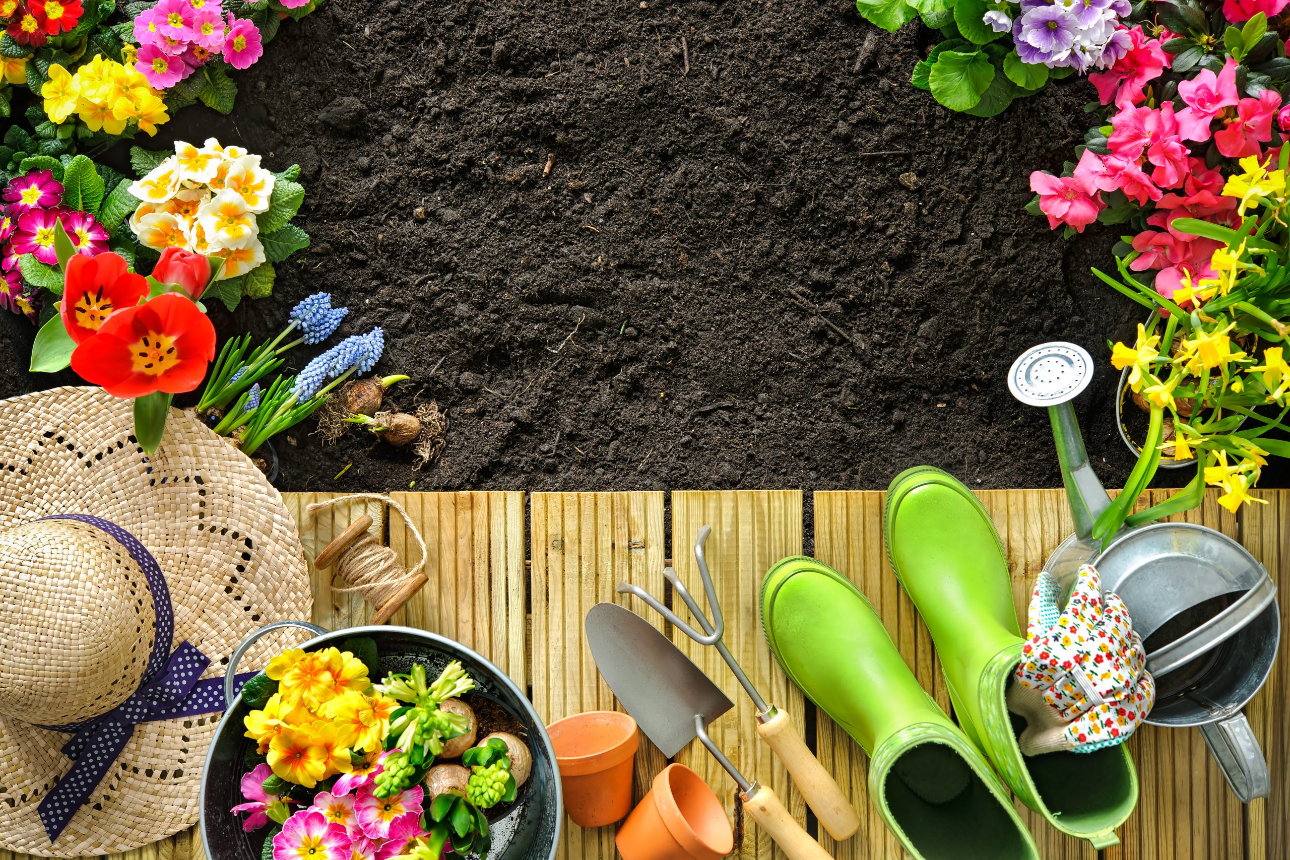 Summer Garden tools and flowers