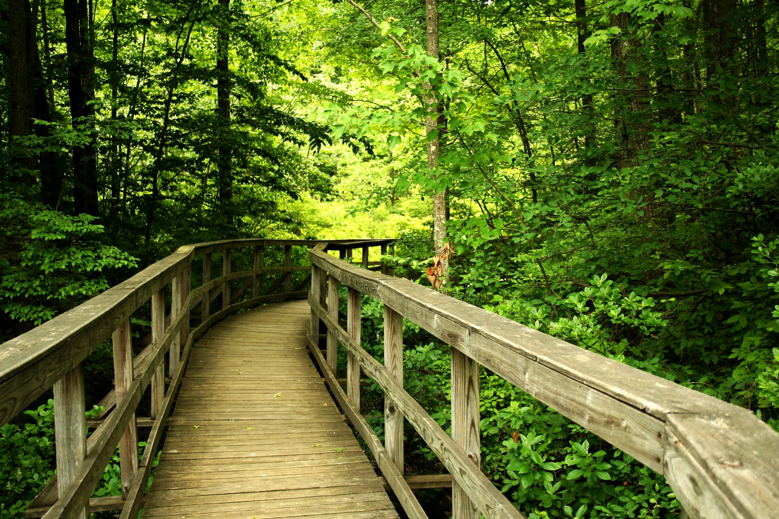 outdoor trail in state park living in douglasville puts you near beatiful nature